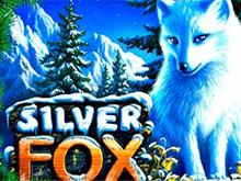 Silver Fox в казино Вулкан на деньги